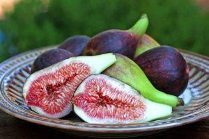 ripe delicious figs